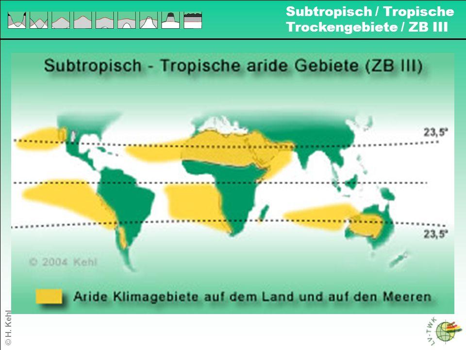 1 Subtropisch / Tropische Trockengebiete / ZB III © H. Kehl