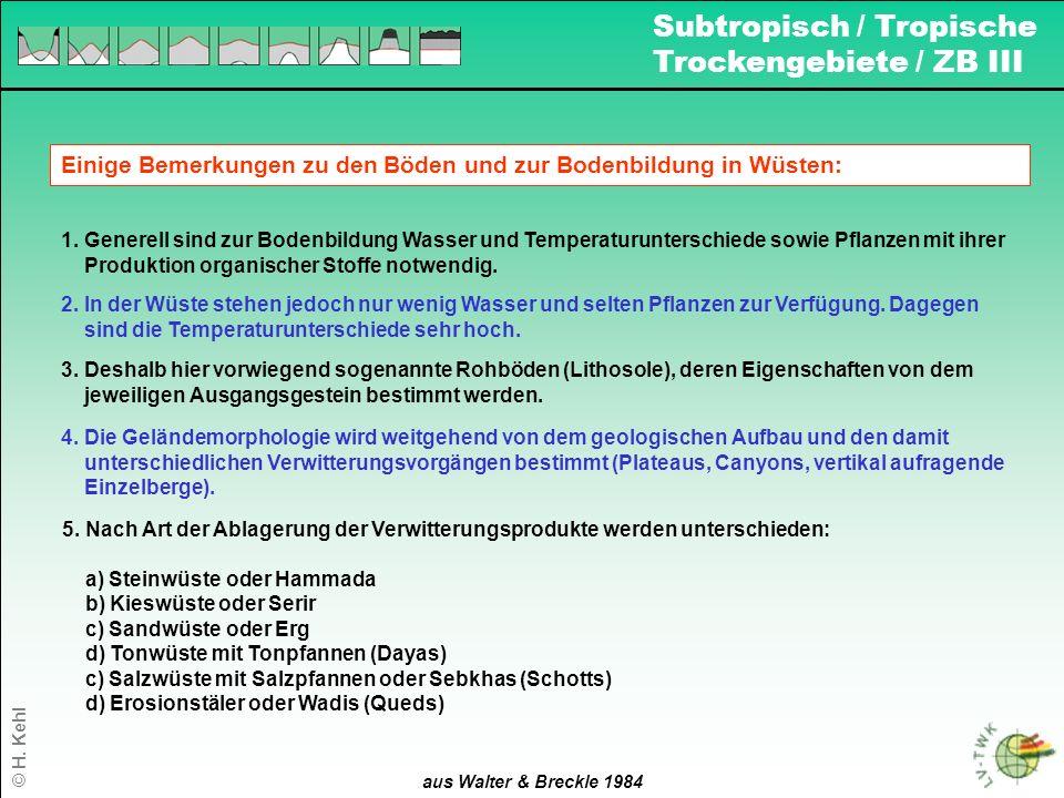 17 aus Walter & Breckle 1984 Einige Bemerkungen zu den Böden und zur Bodenbildung in Wüsten: 1. Generell sind zur Bodenbildung Wasser und Temperaturun