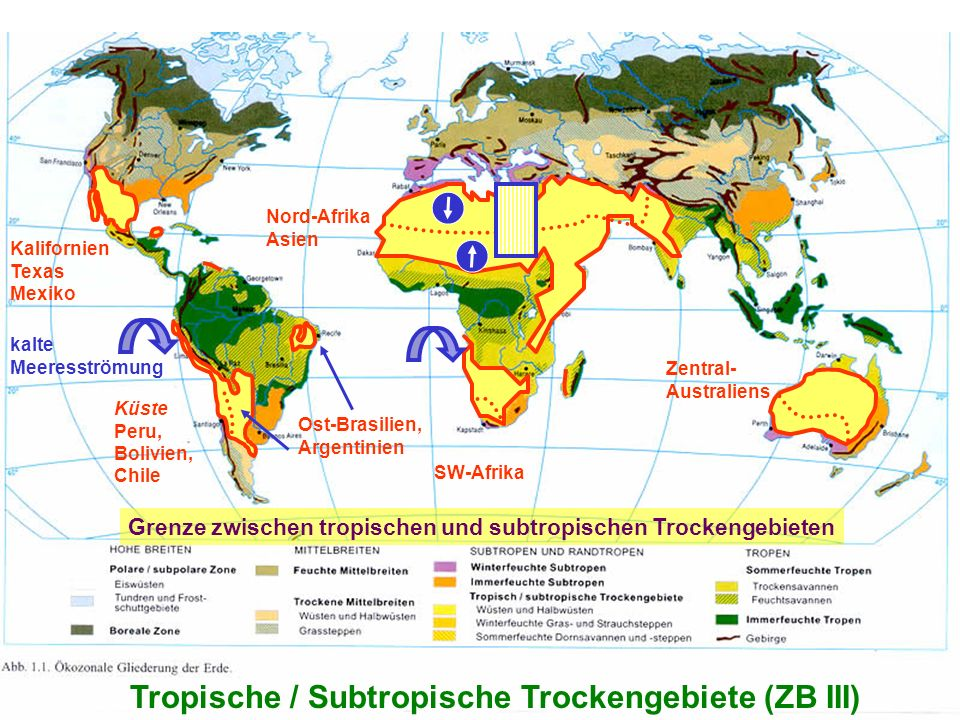 2 Tropische / Subtropische Trockengebiete (ZB III) SW-Afrika Nord-Afrika Asien Kalifornien Texas Mexiko Zentral- Australiens Küste Peru, Bolivien, Chi