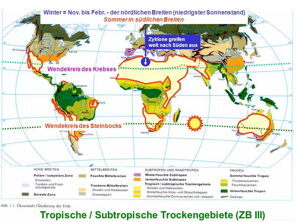 3 Tropische / Subtropische Trockengebiete (ZB III) Winter = Nov. bis Febr. - der nördlichen Breiten (niedrigster Sonnenstand) Sommer in südlichen Brei