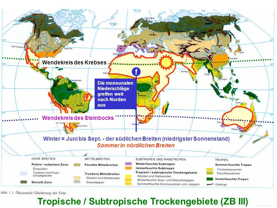 4 Tropische / Subtropische Trockengebiete (ZB III) Winter = Juni bis Sept. - der südlichen Breiten (niedrigster Sonnenstand) Sommer in nördlichen Brei
