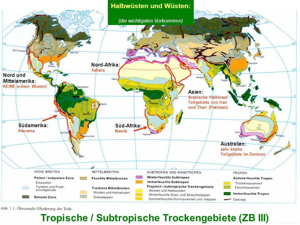 7 Tropische / Subtropische Trockengebiete (ZB III) Halbwüsten und Wüsten: (die wichtigsten Vorkommen) Nord und Mittelamerika: KEINE echten Wüsten! Aus