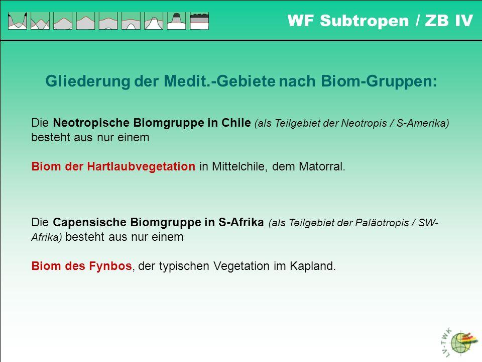 WF Subtropen / ZB IV Gliederung der Medit.-Gebiete nach Biom-Gruppen: Die Neotropische Biomgruppe in Chile (als Teilgebiet der Neotropis / S-Amerika)