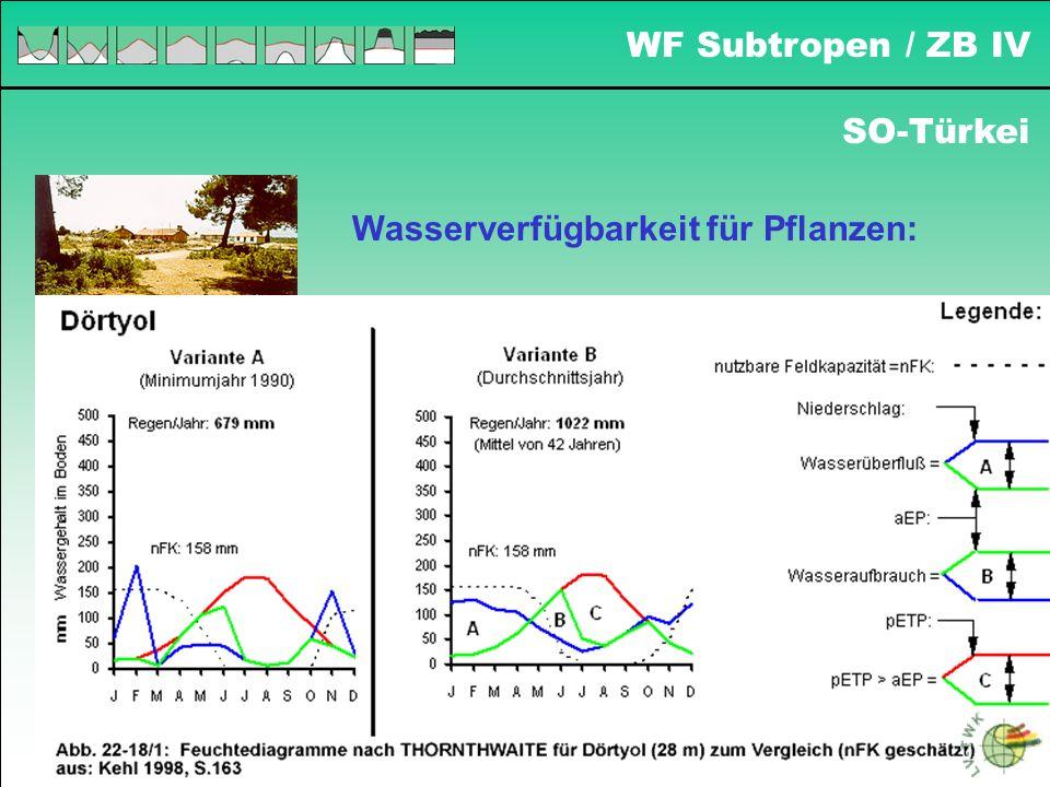 Wasserverfügbarkeit für Pflanzen: SO-Türkei WF Subtropen / ZB IV