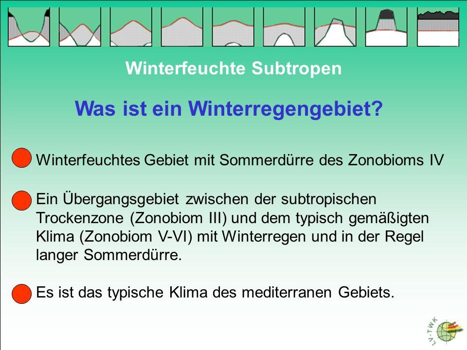 Was ist ein Winterregengebiet? Winterfeuchte Subtropen Ein Übergangsgebiet zwischen der subtropischen Trockenzone (Zonobiom III) und dem typisch gemäß
