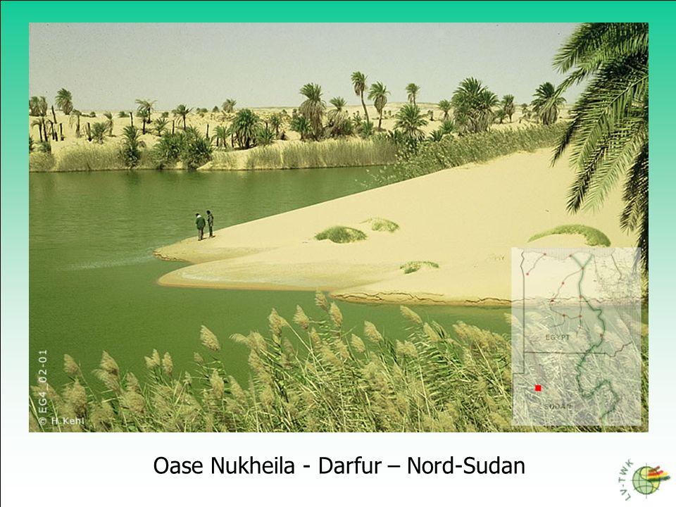 Oase Nukheila - Darfur – Nord-Sudan