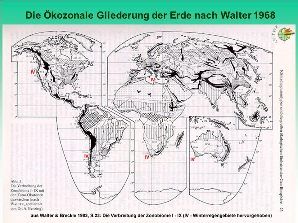 Klima- und Vegetationszonen / Deutsches Museum München