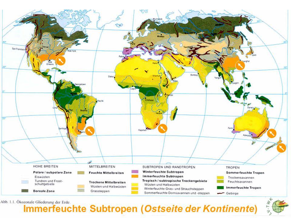 Meter 2000 1500 1000 500 Buche und/oder laubabwerfender Mischwald Zone laubabwerfender Wälder Tanne - (Schwarz)-Kiefer Zone der Nadelwälder Garigue (W-Mediterraneis) Phrygana (O-Mediterraneis) Macchie Zone immergrüner Wälder K i e f e r Stein- und Kermeseiche Korkeiche (z.B.
