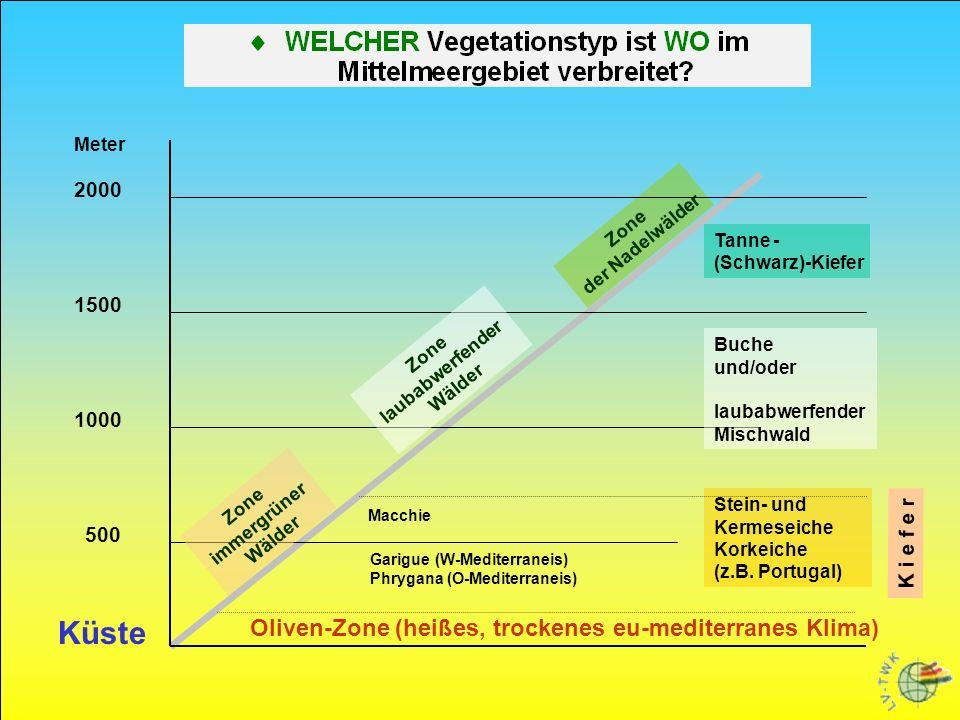 Meter 2000 1500 1000 500 Buche und/oder laubabwerfender Mischwald Zone laubabwerfender Wälder Tanne - (Schwarz)-Kiefer Zone der Nadelwälder Garigue (W