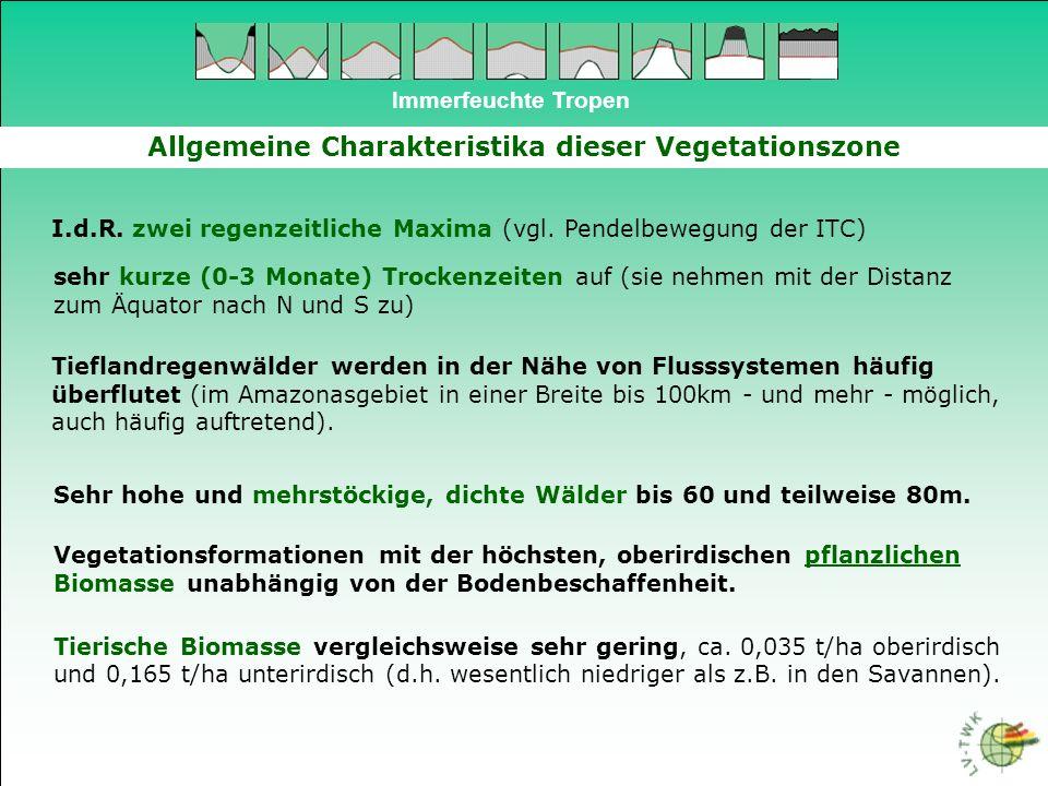 Immerfeuchte Tropen Allgemeine Charakteristika dieser Vegetationszone Vegetationszone mit der potentiell höchsten Produktivität (Substanz pro Flächeneinheit und Zeit bzw.