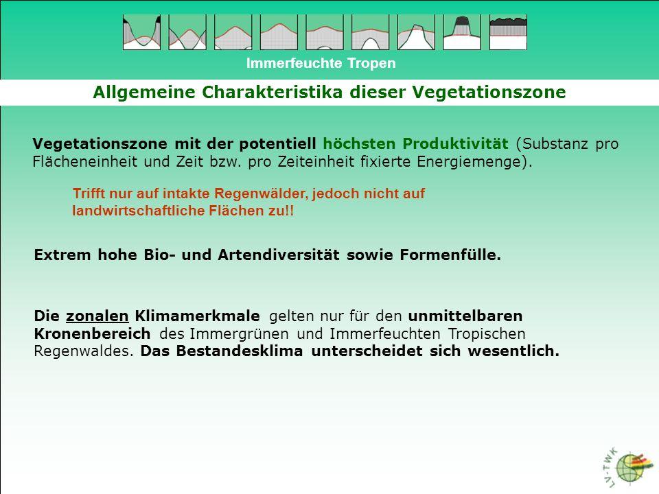 Immerfeuchte Tropen Allgemeine Charakteristika dieser Vegetationszone Vegetationszone mit der potentiell höchsten Produktivität (Substanz pro Flächene