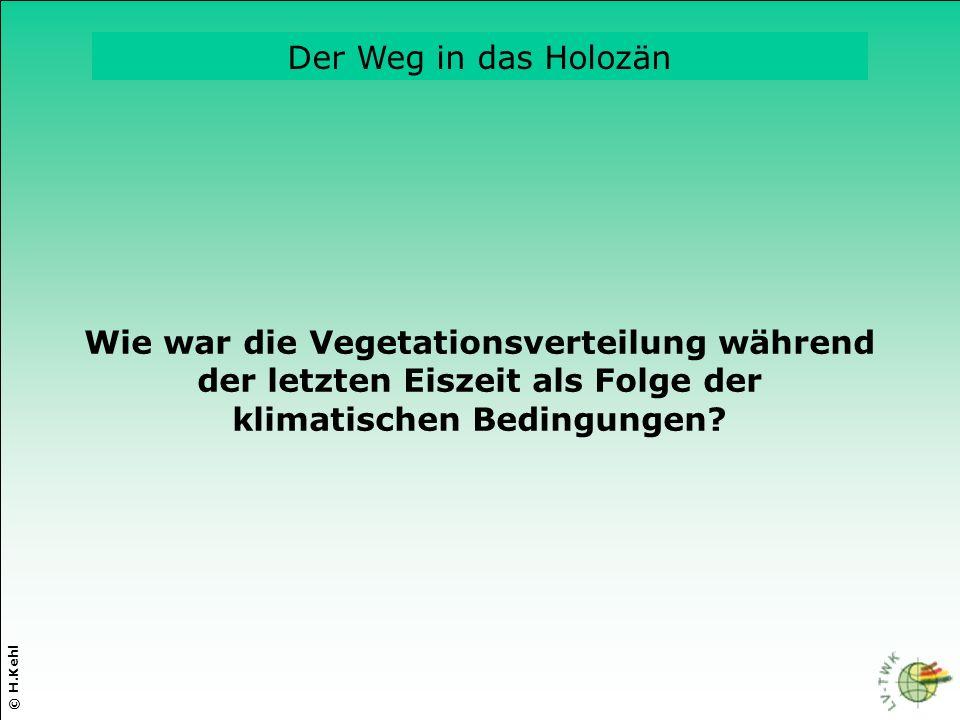 © H.Kehl Die drei wichtigsten Parameter Wie war die Vegetationsverteilung während der letzten Eiszeit als Folge der klimatischen Bedingungen? Der Weg