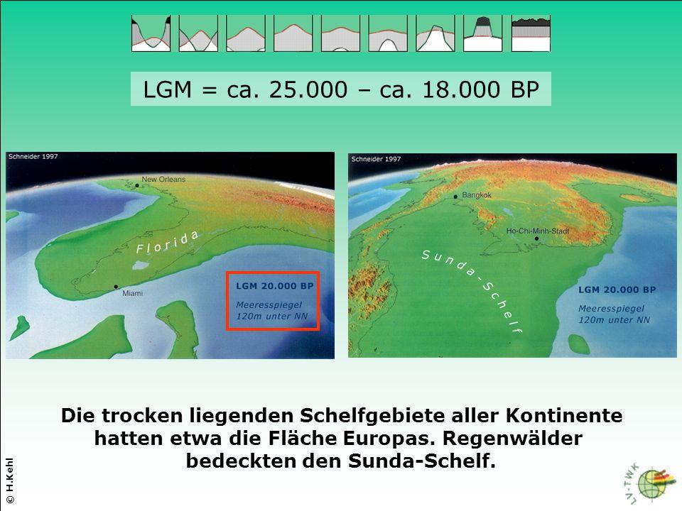 LGM = ca. 25.000 – ca. 18.000 BP Die trocken liegenden Schelfgebiete aller Kontinente hatten etwa die Fläche Europas. Regenwälder bedeckten den Sunda-