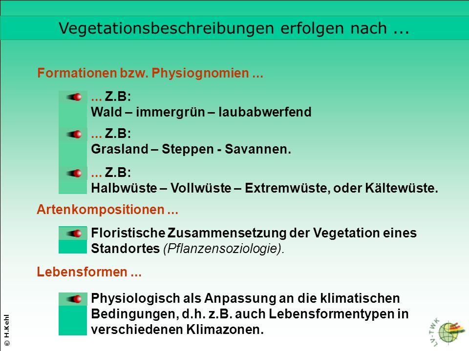 © H.Kehl Formationen bzw.Physiognomien...... Z.B: Wald – immergrün – laubabwerfend...