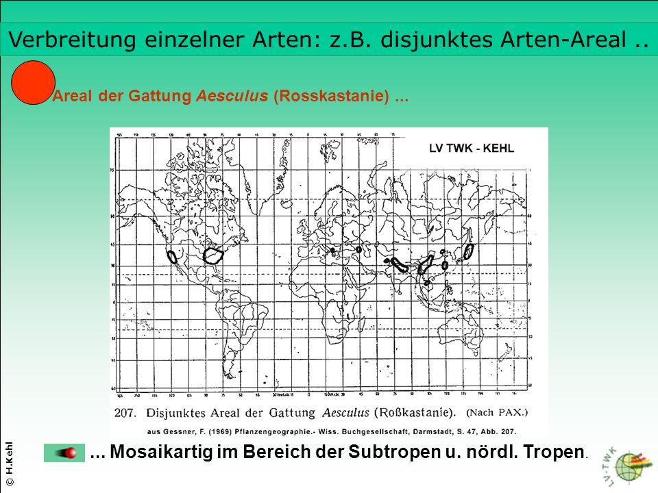 © H.Kehl Areal der Gattung Aesculus (Rosskastanie)......
