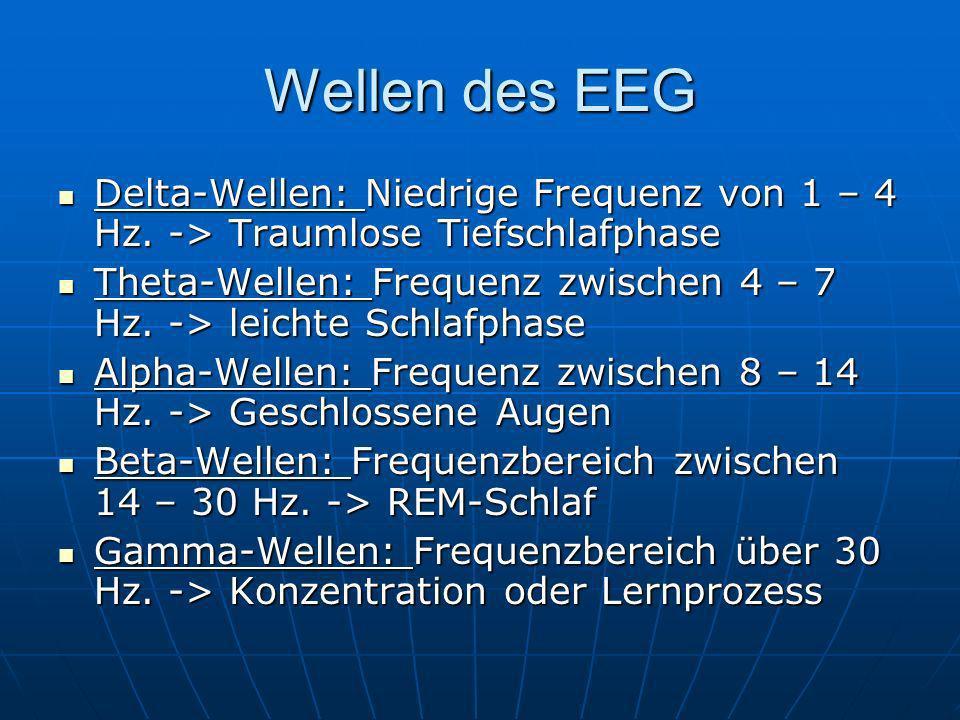 Wellen des EEG Delta-Wellen: Niedrige Frequenz von 1 – 4 Hz. -> Traumlose Tiefschlafphase Delta-Wellen: Niedrige Frequenz von 1 – 4 Hz. -> Traumlose T