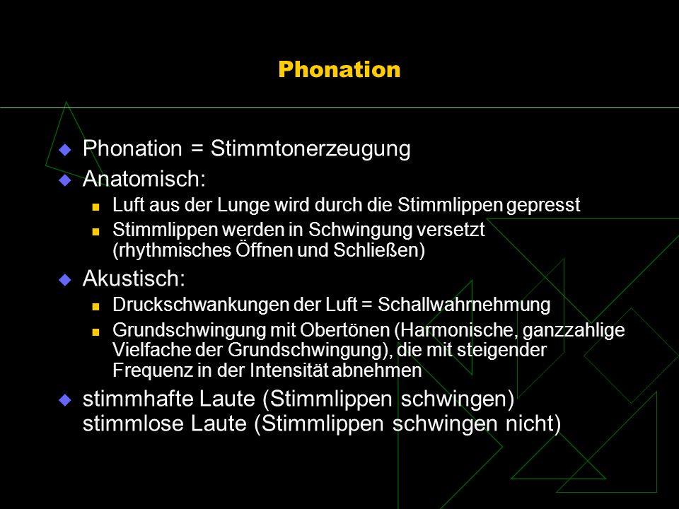 Phonation Phonation = Stimmtonerzeugung Anatomisch: Luft aus der Lunge wird durch die Stimmlippen gepresst Stimmlippen werden in Schwingung versetzt (