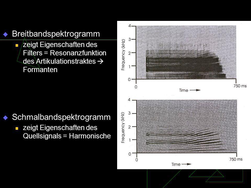 Breitbandspektrogramm zeigt Eigenschaften des Filters = Resonanzfunktion des Artikulationstraktes Formanten Schmalbandspektrogramm zeigt Eigenschaften