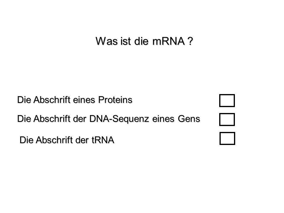 Was ist die mRNA ? Die Abschrift der tRNA Die Abschrift eines Proteins Die Abschrift der DNA-Sequenz eines Gens