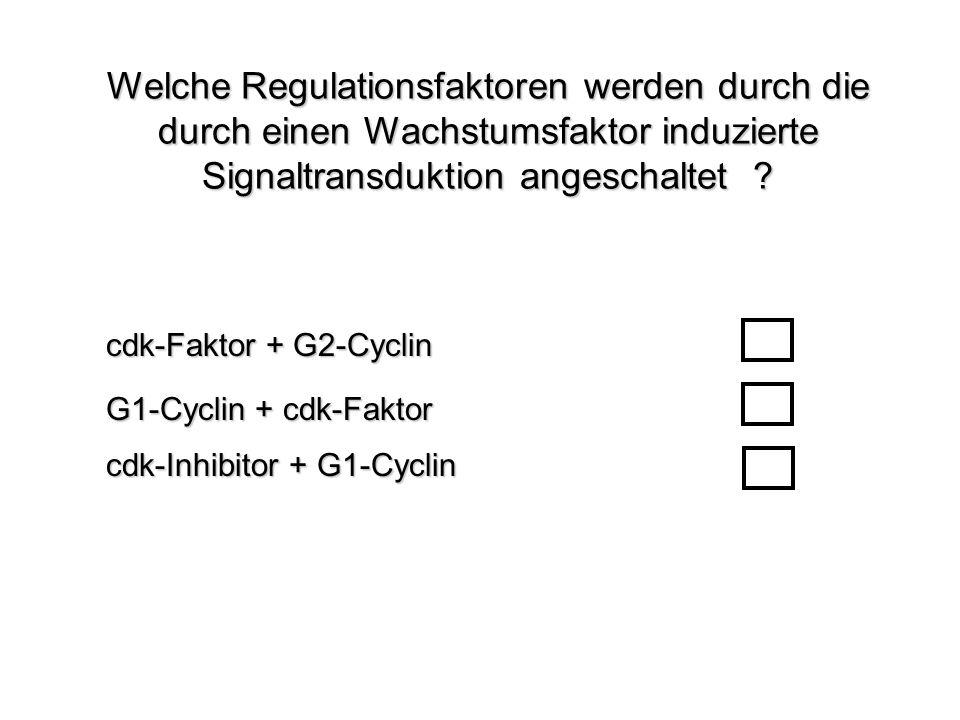 Welche Regulationsfaktoren werden durch die durch einen Wachstumsfaktor induzierte Signaltransduktion angeschaltet ? G1-Cyclin + cdk-Faktor cdk-Faktor