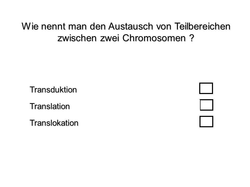 Wie nennt man den Austausch von Teilbereichen zwischen zwei Chromosomen ? TranslokationTransduktionTranslation