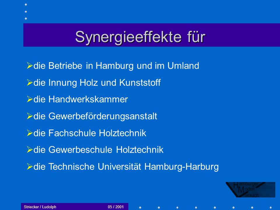 Striecker / Ludolph05 / 2001 Ziele bis zum Januar 2001 Auswertung des Versuchs – Erstellen des Abschlußberichtes.
