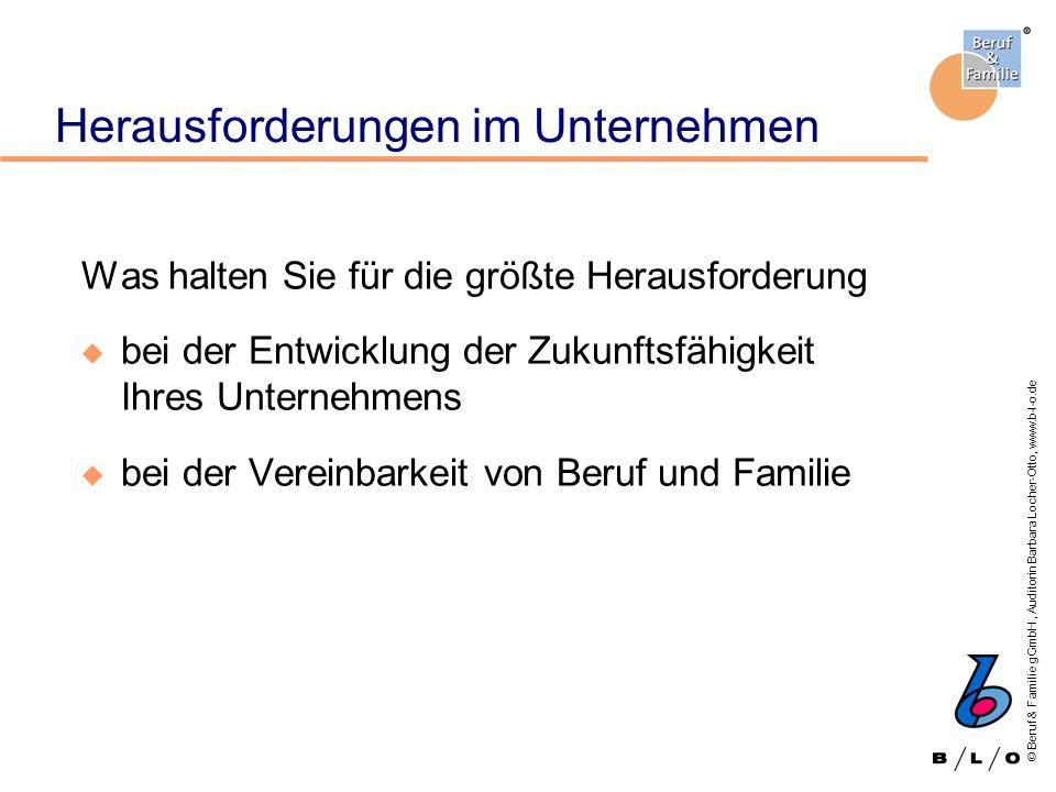 © Beruf & Familie gGmbH, Auditorin Barbara Locher-Otto, www.b-l-o.de Auswertungsbeispiel