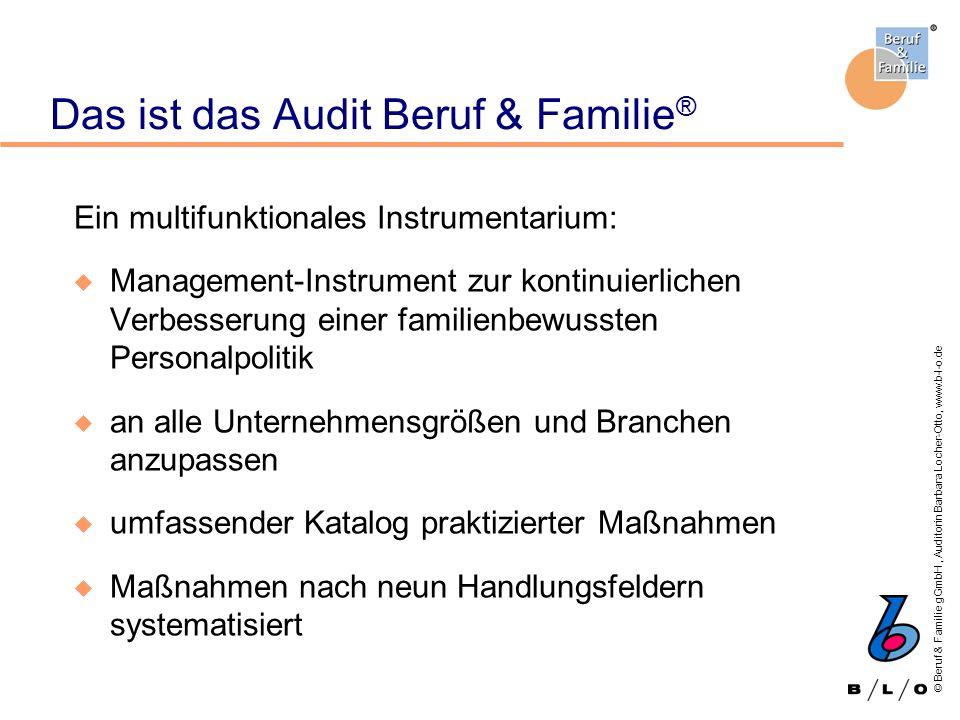 © Beruf & Familie gGmbH, Auditorin Barbara Locher-Otto, www.b-l-o.de Das ist das Audit Beruf & Familie ® Ein multifunktionales Instrumentarium: u Mana