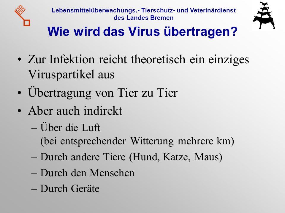 Lebensmittelüberwachungs,- Tierschutz- und Veterinärdienst des Landes Bremen Wie wird das Virus übertragen? Zur Infektion reicht theoretisch ein einzi