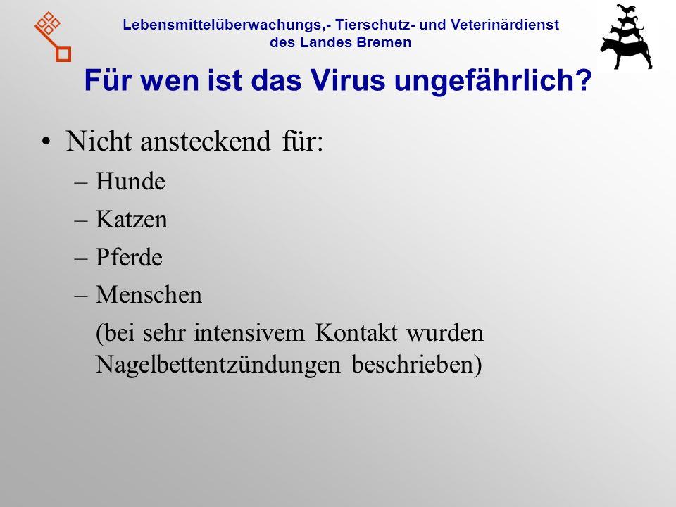 Lebensmittelüberwachungs,- Tierschutz- und Veterinärdienst des Landes Bremen Für wen ist das Virus ungefährlich? Nicht ansteckend für: –Hunde –Katzen