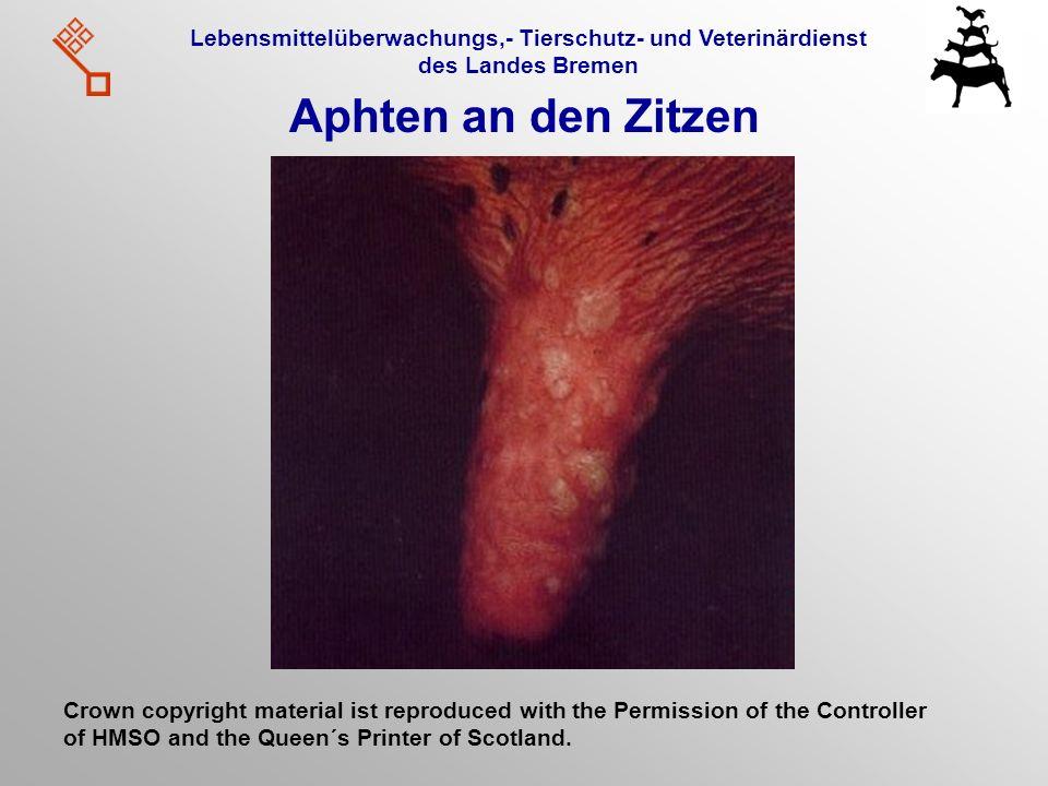 Lebensmittelüberwachungs,- Tierschutz- und Veterinärdienst des Landes Bremen Aphten an den Zitzen Crown copyright material ist reproduced with the Per