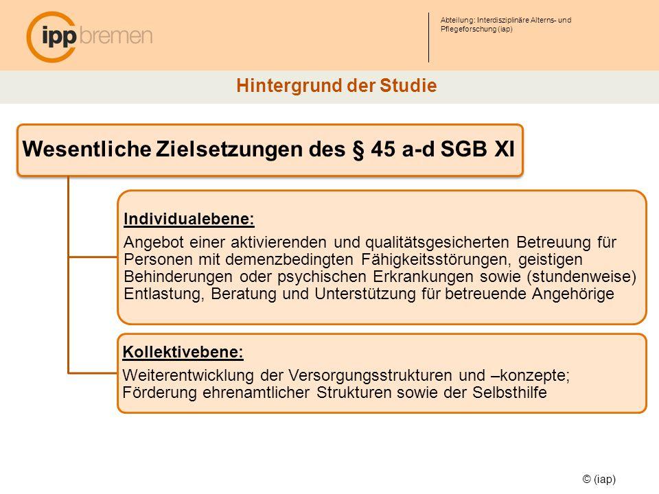 Abteilung: Interdisziplinäre Alterns- und Pflegeforschung (iap) Wesentliche Zielsetzungen des § 45 a-d SGB XI Individualebene: Angebot einer aktiviere