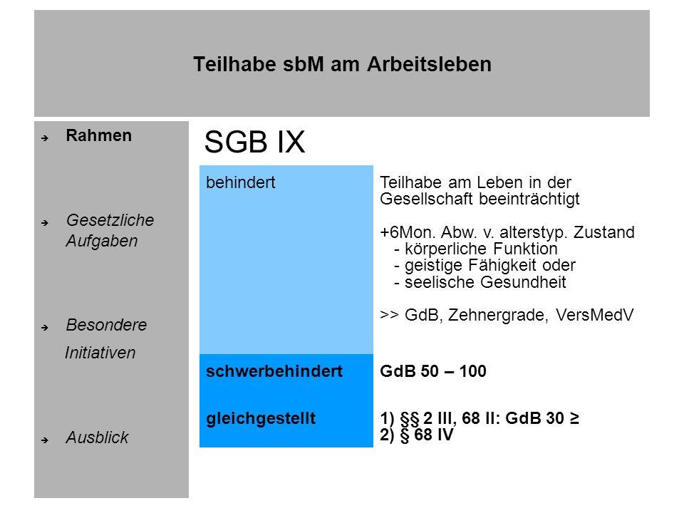 Teilhabe sbM am Arbeitsleben Rahmen Gesetzliche Aufgaben Besondere Initiativen Ausblick rd.