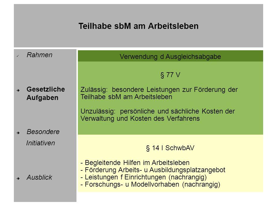 Teilhabe sbM am Arbeitsleben Rahmen Gesetzliche Aufgaben Besondere Initiativen Ausblick Auswahl im Überblick 1) Aktionsprogramm Inklusion voranbringen 2) Arbeitsmarktprogramm PLUS 3) JobBudget 4) Initiative Inklusion (1 – 3) 5) Integrationsberater 6) InWi – Inklusion in der Wissenschaft
