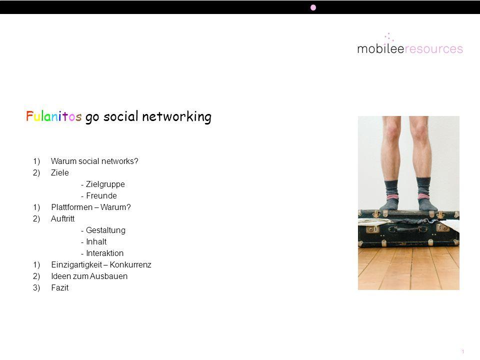 1 Fulanitos go social networking 1)Warum social networks? 2)Ziele - Zielgruppe - Freunde 1)Plattformen – Warum? 2)Auftritt - Gestaltung - Inhalt - Int