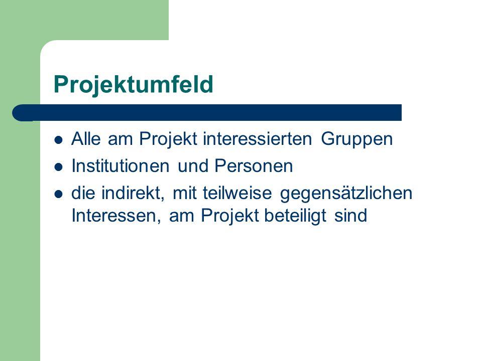 Projektumfeld Alle am Projekt interessierten Gruppen Institutionen und Personen die indirekt, mit teilweise gegensätzlichen Interessen, am Projekt bet