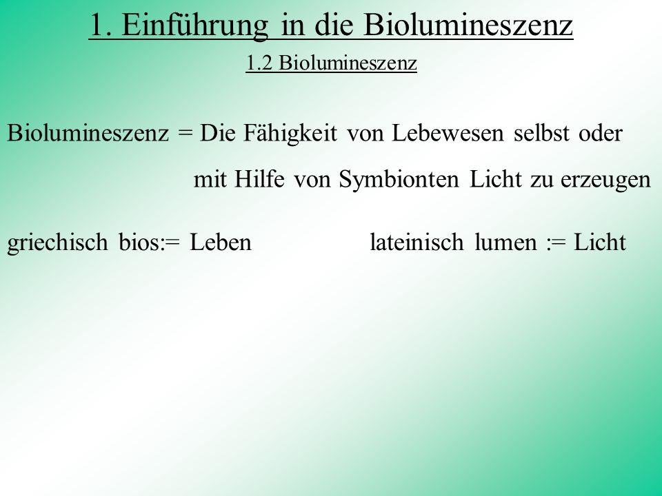 3. Biochemische Vorgänge 3.1 bei vibrio Fischeri 3.2 bei der Feuerfliege