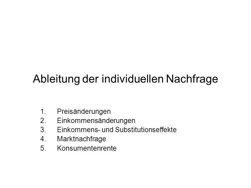 Ableitung der individuellen Nachfrage 1.Preisänderungen 2.Einkommensänderungen 3.Einkommens- und Substitutionseffekte 4.Marktnachfrage 5.Konsumentenre