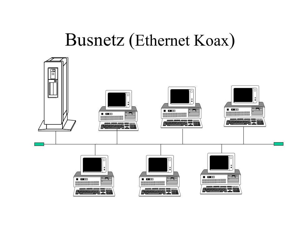 Busnetz ( Ethernet Koax )