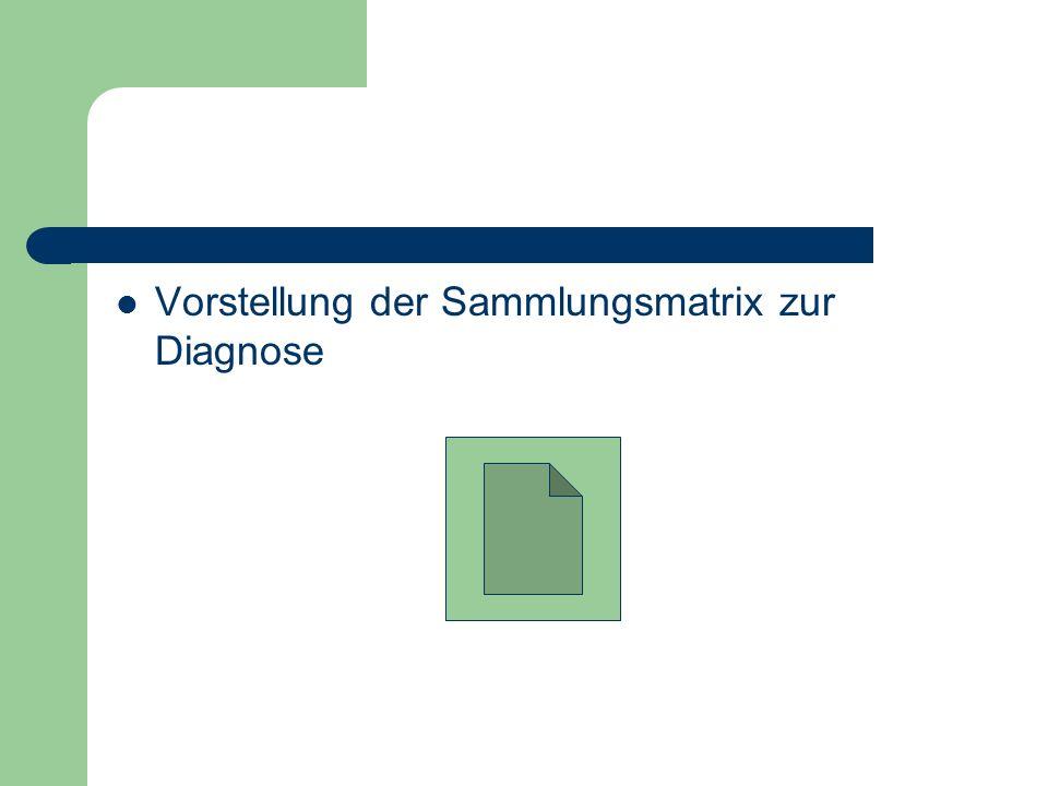 Vorstellung der Sammlungsmatrix zur Diagnose