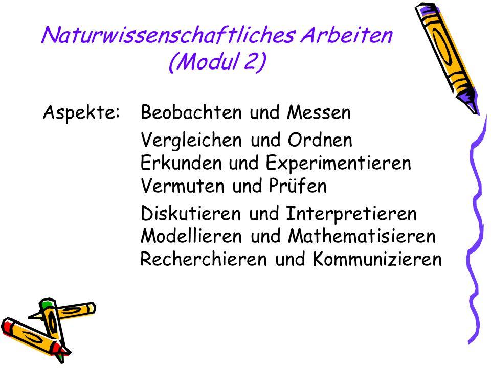 Naturwissenschaftliches Arbeiten (Modul 2) Aspekte: Beobachten und Messen Vergleichen und Ordnen Erkunden und Experimentieren Vermuten und Prüfen Disk