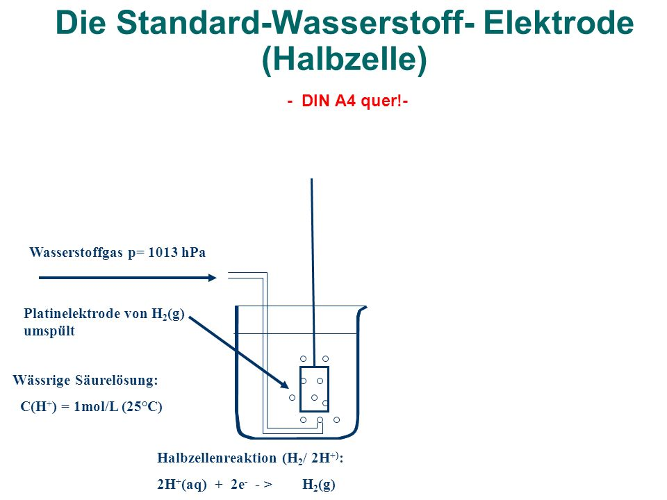 Die Standard-Wasserstoff- Elektrode (Halbzelle) - DIN A4 quer!- Wasserstoffgas p= 1013 hPa Platinelektrode von H 2 (g) umspült Halbzellenreaktion (H 2