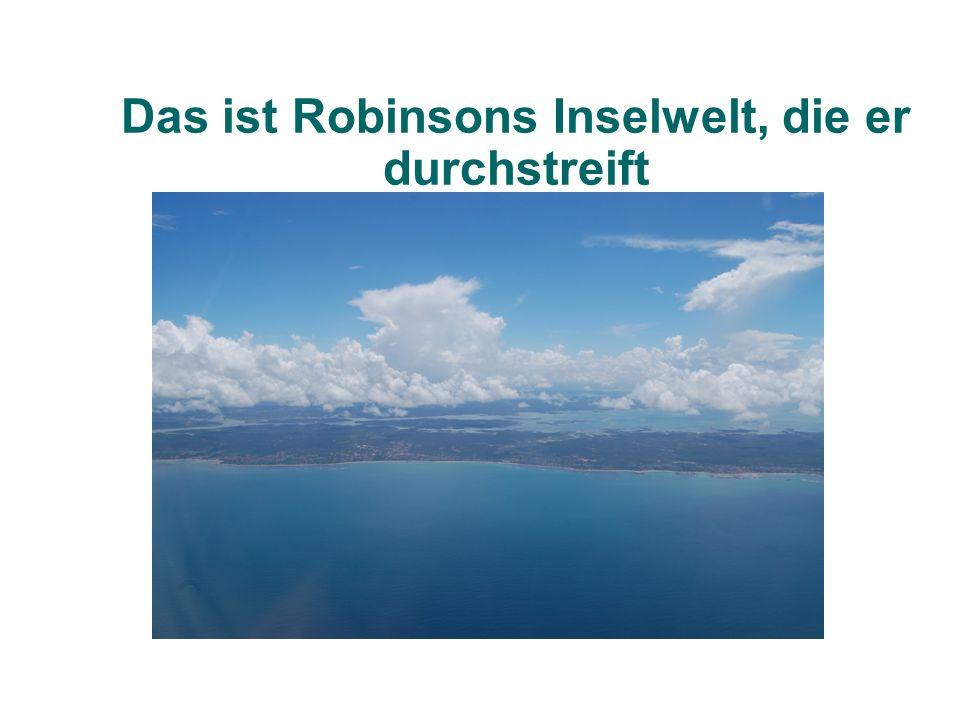 Eine Robinsonade besteht aus zwei wesentlichen Strukturelementen: den Problembausteinen und einer Rahmenhandlung, in die die Problembausteine eingebettet sind.