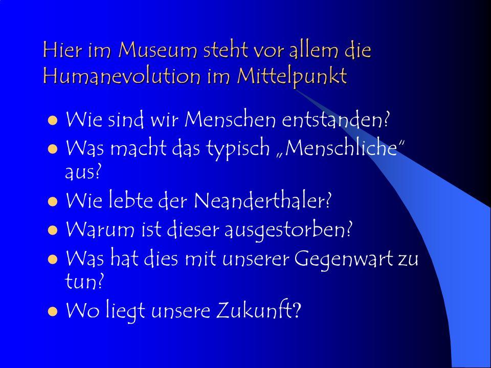 Hier im Museum steht vor allem die Humanevolution im Mittelpunkt Wie sind wir Menschen entstanden.