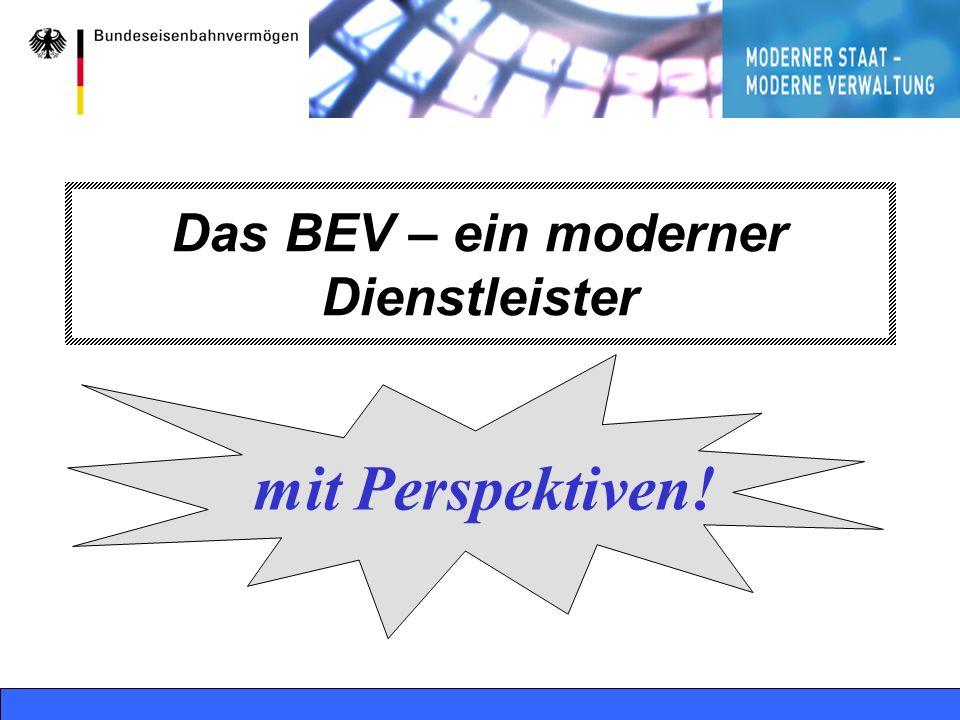 Bonn, 08.02.2004 RelL 36, PL BVF - online18 Das BEV – ein moderner Dienstleister mit Perspektiven!