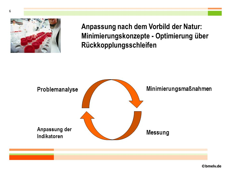 6 Anpassung nach dem Vorbild der Natur: Minimierungskonzepte - Optimierung über Rückkopplungsschleifen Problemanalyse Minimierungsmaßnahmen Messung Anpassung der Indikatoren