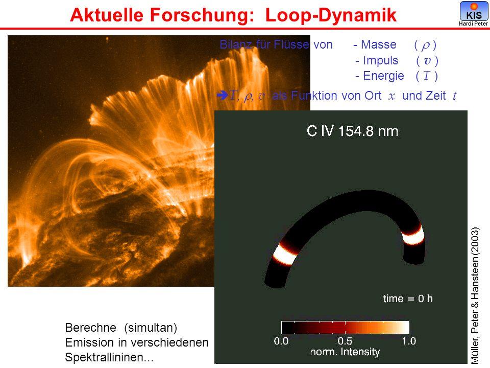Aktuelle Forschung: Loop-Dynamik Hardi Peter KIS Bilanz für Flüsse von - Masse ( ) - Impuls ( v ) - Energie ( T ) T,, v als Funktion von Ort x und Zei
