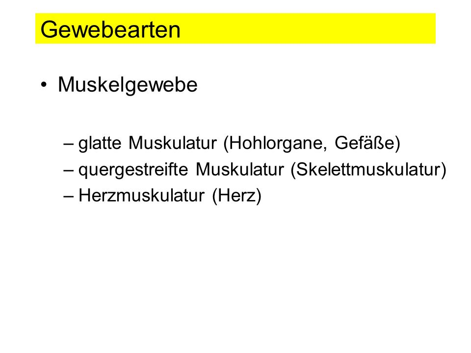 Gewebearten Muskelgewebe –glatte Muskulatur (Hohlorgane, Gefäße) –quergestreifte Muskulatur (Skelettmuskulatur) –Herzmuskulatur (Herz)