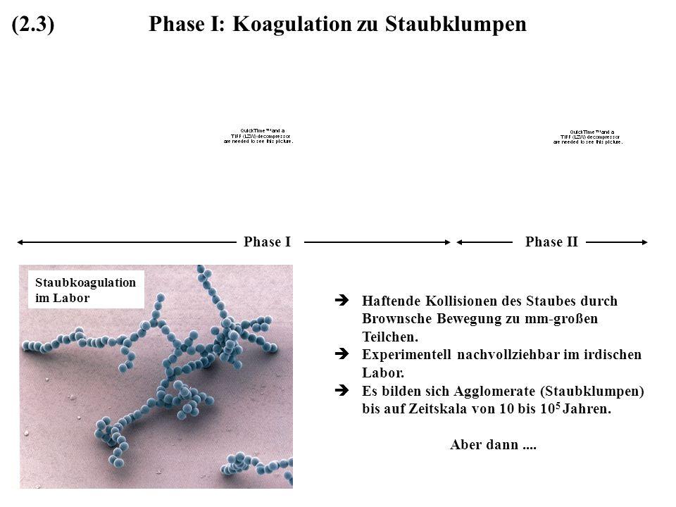 Phase I: Koagulation zu Staubklumpen Haftende Kollisionen des Staubes durch Brownsche Bewegung zu mm-großen Teilchen. Experimentell nachvollziehbar im