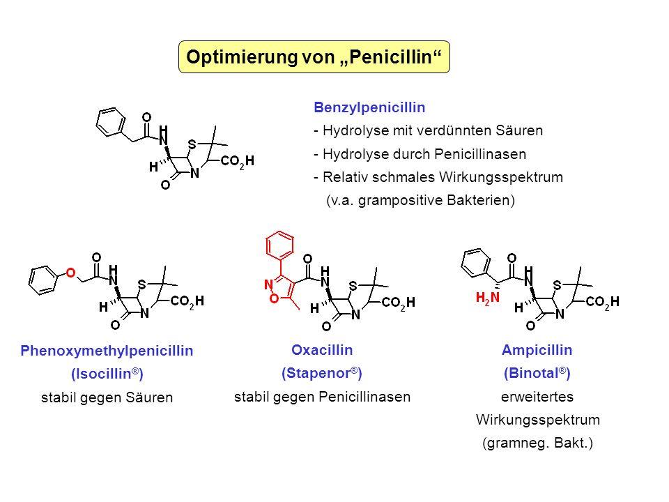 Optimierung von Penicillin Benzylpenicillin - Hydrolyse mit verdünnten Säuren - Hydrolyse durch Penicillinasen - Relativ schmales Wirkungsspektrum (v.